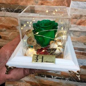 باکس-گل-جاویدان-سبز-رنگ