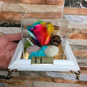 باکس-گل-جاویدان-هفت-رنگ