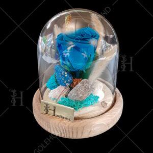 گل-رز-جاویدان-حبابی-01