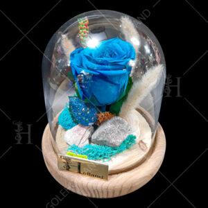 گل-رز-جاویدان-حبابی-02