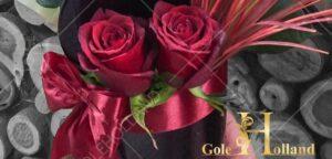 باکس گل رز ورنی