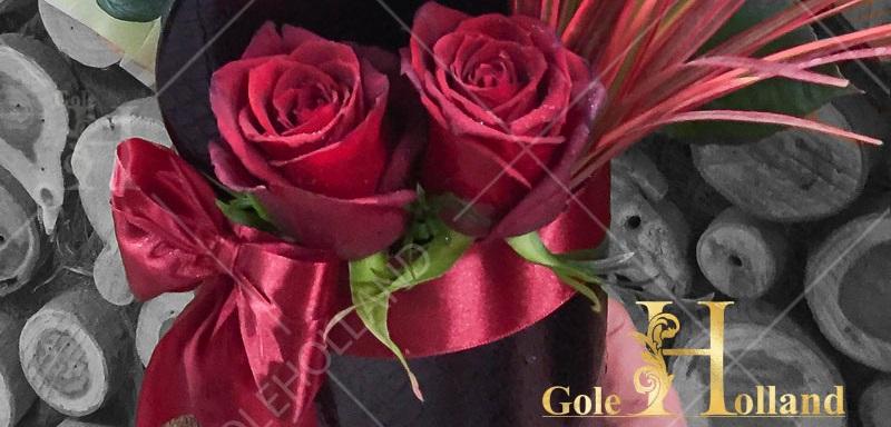 نمای نزدیک باکس گل رز ورنی با تزیین اسکناس
